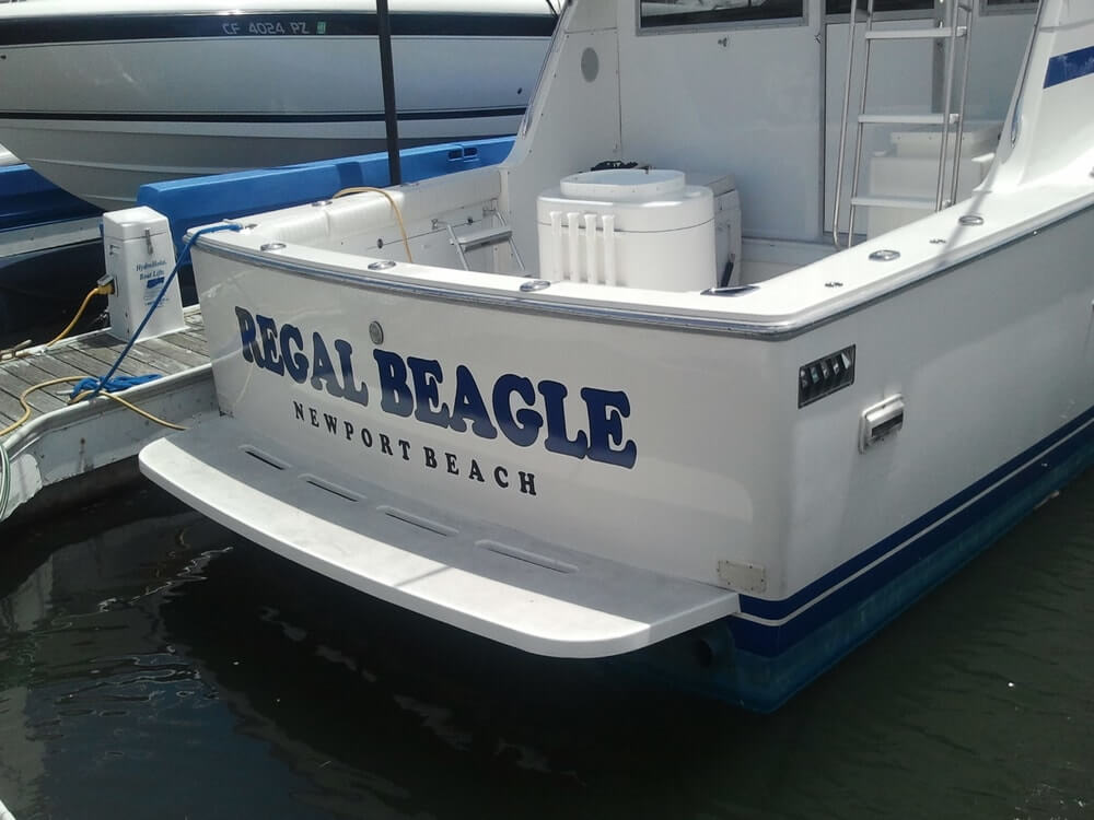 Boat vehicle wrap Regal Beagle